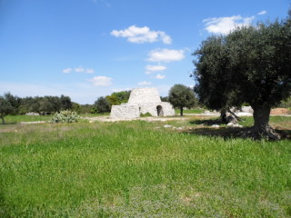 Land plot 2 km from the sea of Torre Vado of 6.300 sqm with Pajara and Ancient furnace