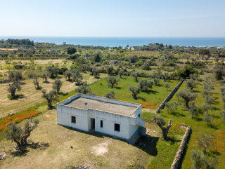 Villa immersed in secular olive trees, with sea views