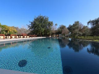 Villa with pool, and restored habitable Trulli, in a wonderful garden