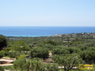 foto immobile Villa in collina con splendida vista mare n. 25