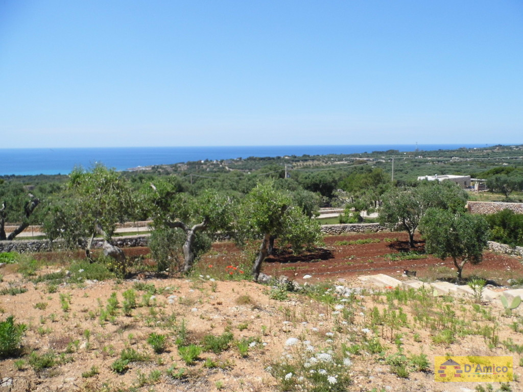 foto immobile Villa in collina con splendida vista mare n. 5