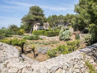Villa Prestigiosa su due livelli, vista mare, + Dependance + Giardino di mq 5000
