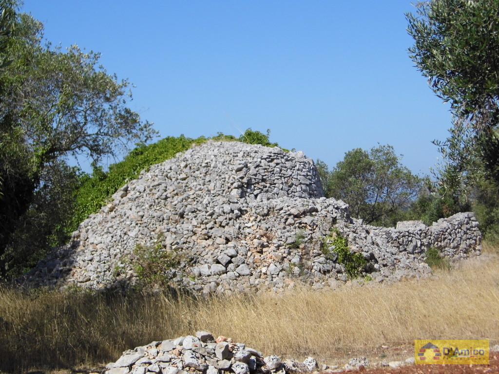 Terreno con ulivi vista mare con casa antica in pietra e - Terreno con casa ...