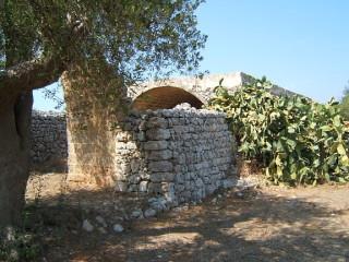Terreno con ulivi secolari con progetto VILLA + PISCINA + Fabbricato antico di mq 150