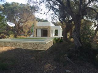 Terreno con ulivi, vista mare, con progetto Villa con Piscina