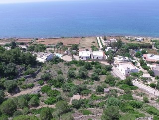 Land with 5 trulli facing the sea and 11,000 square meters of typical Salento garden