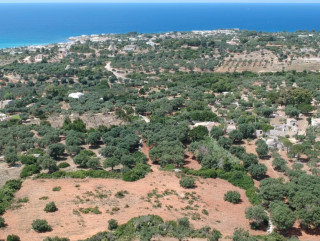 Sea view land with olive trees and Villa project
