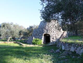 Building land, sea view, with Trullo and ancient olive trees
