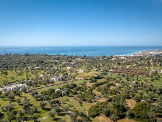 Terreno con Progetto Villa e Piscina, Trulli antichi, a  km 1 dal mare