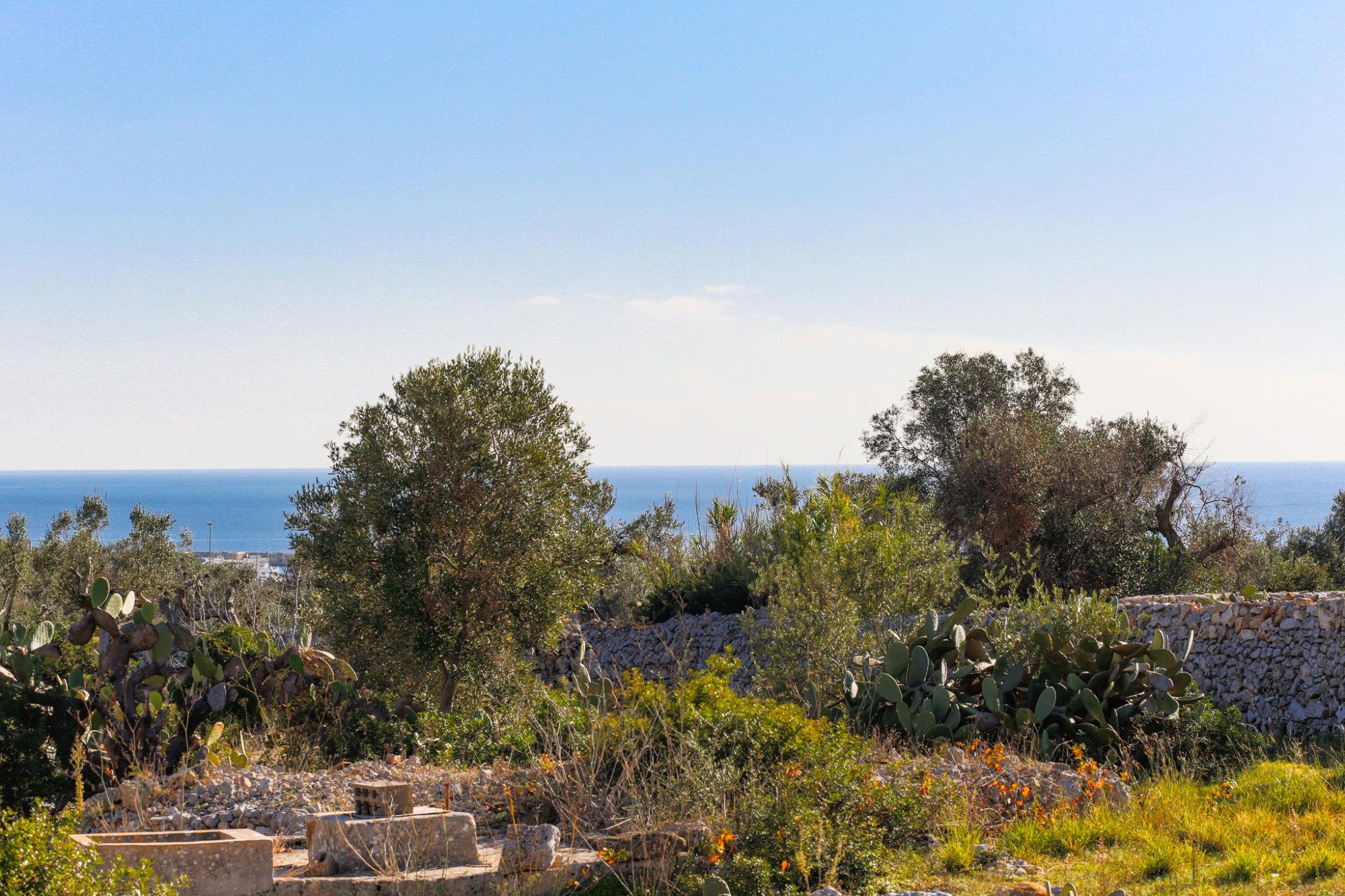 Terreno edificabile, vista mare, con Progetto Villa e Fabbricato Rurale - Salve