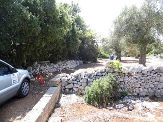 Land of 15,000 square meters, with olive trees, building, 1 or 2 villas