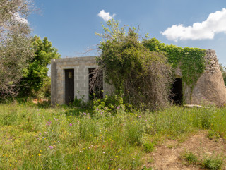Rural building with centuries-old olive trees, with plans for a second villa