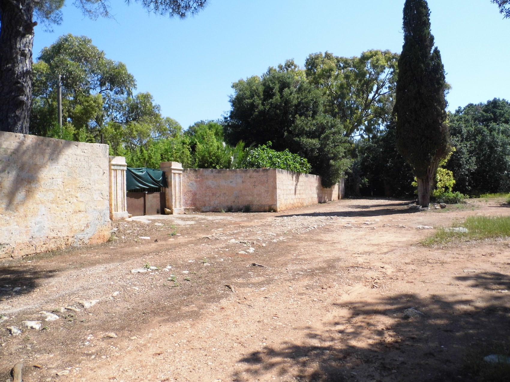 Antica Masseria CHIUPPI, con uliveto, vigneto e bosco di querce - Ugento