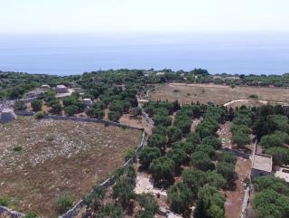 Terreno di mq 6470 con 2 fabbricati rurali del 1830 vista mare